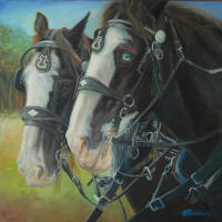 Blue Eyed Clydesdale by Bobbi Baldwin